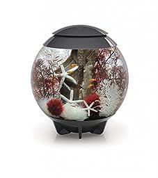 biOrb HALO 60 Aquarium with Moonlight LED Light - 16 Gallon, Grey