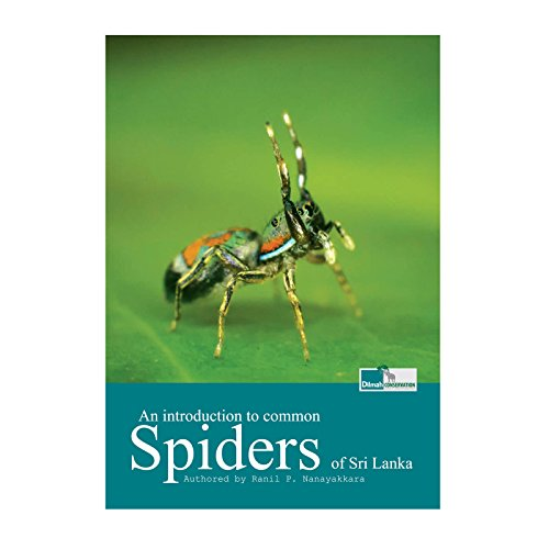 an-introduction-to-common-spiders-of-sri-lanka-english-edition