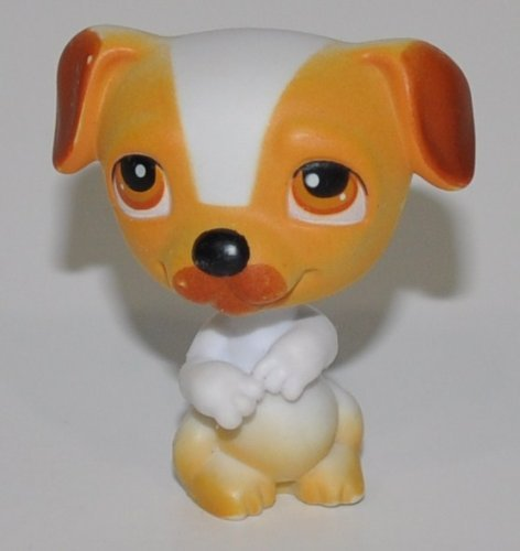 Jack Russell #40 (White, Orange/Brown Accents) - Littlest Pet Shop (Retired) Collector Toy - LPS Collectible Replacement Single Figure - Loose (OOP Out of Package & Print) - 1