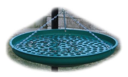 Backyard Birding Solutions Seed Saucer Green