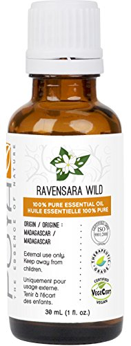 Ravensara Wild Essential Oil 30 ml