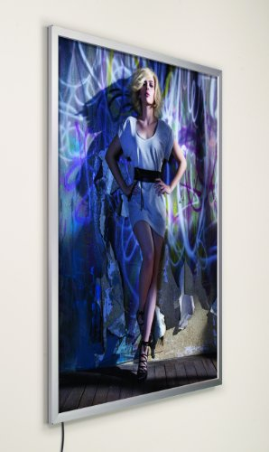 Displays2Go Illuminated Backlit Poster Light Box Frame For 18 X 24 Prints