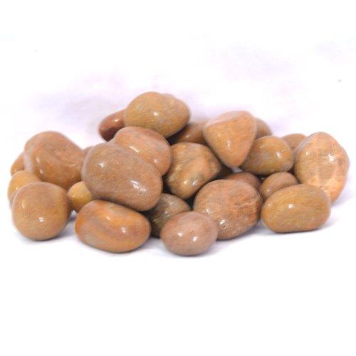Pebble Pebblewala Glossy Stone Pebbles