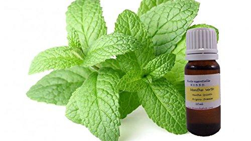 huile-essentielle-menthe-verte-10ml