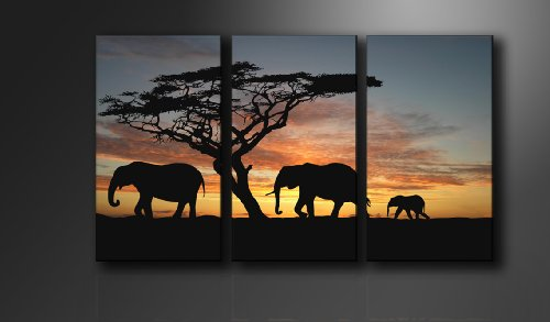 Picture - art on canvas africa length 63