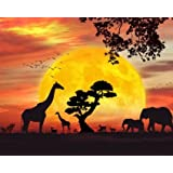WiHome 5D Diamond Painting Kits for Adults Full Drill Black Safari Embroidery Rhinestone Painting