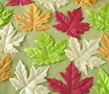 Maple Leaf Soaps - 16 maple leaves per box (assorted)