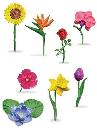 Safari Ltd Flowers TOOB by Safari Ltd. TOY (English Manual)