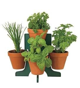 Buzzy herb grow kit with stand indoor herb for Indoor gardening amazon