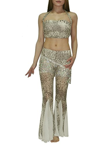 2 PCS SET: Womens Exotic Belly Dance Cropped Top & Skirt Pant Set
