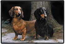 Doormat Gift Shop - Dachshunds on Path Doormat :  doormat shop gift dachshunds