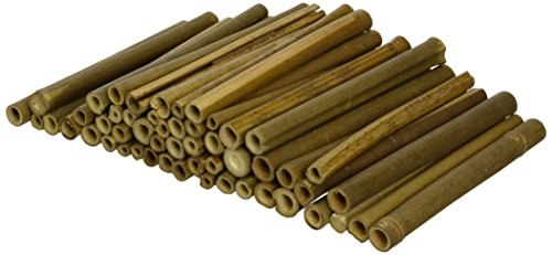 Wildlife-World-Solitary-Bee-Tubes-Wooden-Pack-of-50