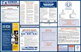 2015 Texas Labor Law Poster (Space Saver-1 All-on-one State and Federal) (Texas State & Federal Labor Law Poster)