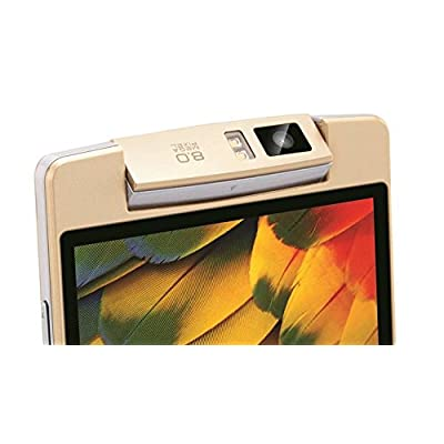 iBall Avonte 5 Android Mobile Phone (Gold)