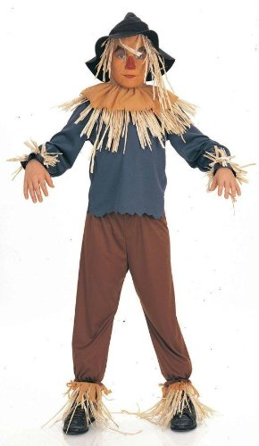 Costumes For All Occasions Ru882507Md Wiz Of Oz Scarecrow Child Med