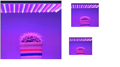 Square Grow Light Panel Led Blue/Red Led Indoor Garden Hydroponic Plant Grow