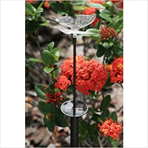 Click to read our review of Smart Solar Chameleon Solar Stake Light with Butterfly Topper and Color Changing LED