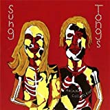 Sung Tongs ~ Animal Collective