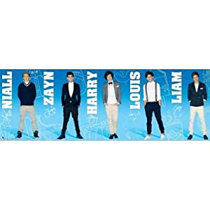 (21x62) One Direction Group Panorama Music Door Poster from Poster Revolution