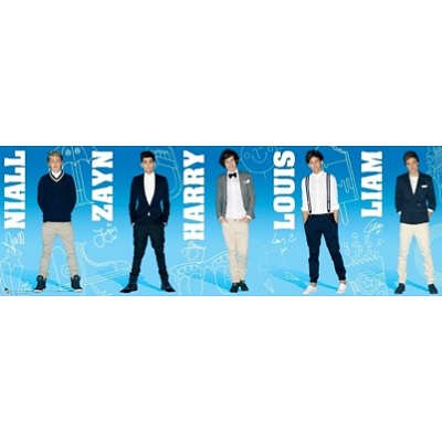 One Direction Group Panorama Music Door Poster