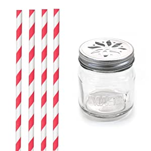 Dress My Cupcake DMC31337 Vintage Glass Drinking Mason Jar Sippers with Flower Lid and Paper Straws Party Kit, Red Striped, Set of 12