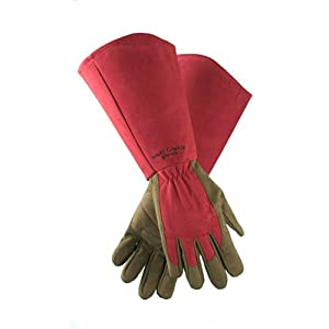 West County 054RM Gauntlet Rose Glove, Ruby, Medium