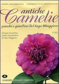antiche-camelie-del-lago-maggiore-2
