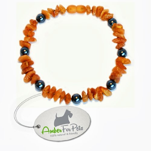 20-26cm-amber-collar-for-dogs-cats-100-baltic-amber-free-of-chemicals-flea-tick-protection-no-second
