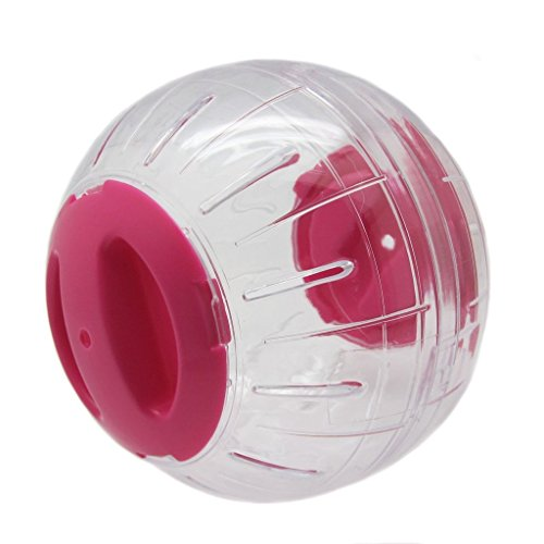 FATPET® Kerry Run-About Small Animal Exercise Toy Pet Run Ball for Small Pet Hamster and Mouse 41T0J5srSOL