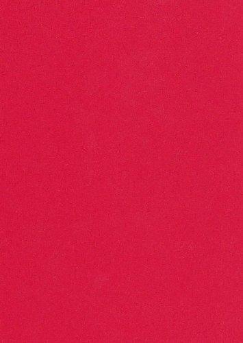125 fogli A4 160g/m² color rosso coral di carta per ufficio. Carta superiore qualità di copia a colori per laser a getto d'inchiostro. Prima classe per i fax in entrata Poster Volantini Newsletter Avvisi importanti sistemi di allarme di promemoria ordine