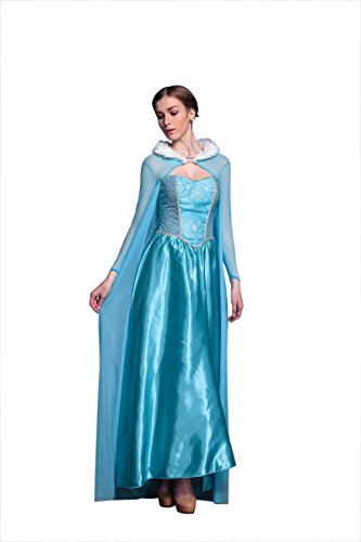 Disney Frozen Inspired Queen Elsa Winter Dress Adult Costume Halloween Cosplay S-XL (XL)