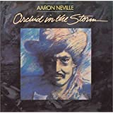 Orchids in the Stormby Aaron Neville