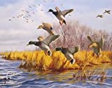 As Good As Home Ducks Unlimited Tin Sign