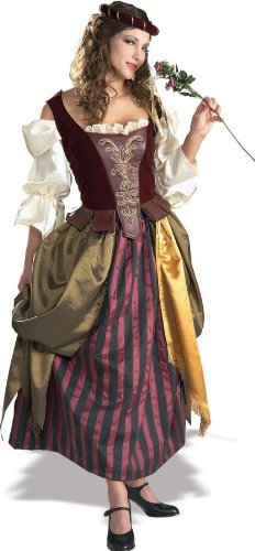 Super Deluxe Renaissance Maiden Adult Costume - Womens Large