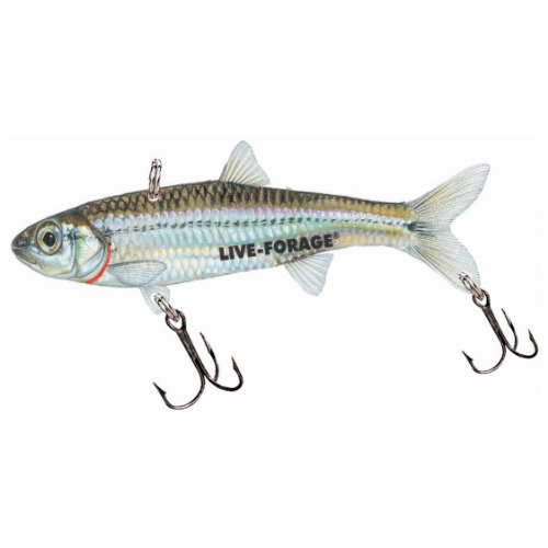 Best deals northland fishing tackle 1 8 oz fishfry for Best fishing times for today