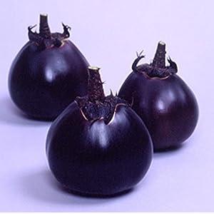 Eggplant Japanese Kamo Seeds 75 Seeds