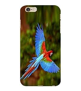 ColourCraft Beautiful Parrot Design Back Case Cover for APPLE IPHONE 6S PLUS