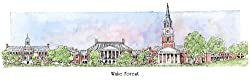 Wake Forest University - Collegiate Sculptured Ornament