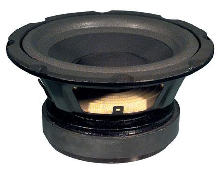 8'' High Excursion Woofer - 120W Rms 4Ohm With Headphones