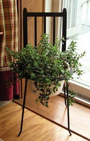 Plant Stand Chair - Buy Plant Stand Chair - Purchase Plant Stand Chair (Home, Home & Garden,Categories,Patio Lawn & Garden,Outdoor Decor)