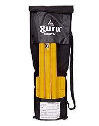 Guru Plastic Stump Set; Plastic Stump; Stump set