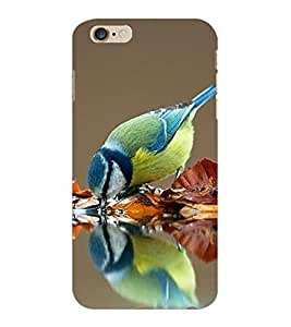 ColourCraft Beautiful Bird Design Back Case Cover for APPLE IPHONE 6S PLUS