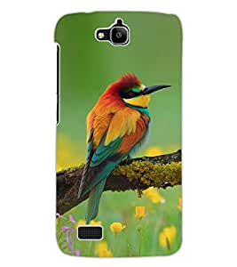 ColourCraft Amazing Bird Design Back Case Cover for HUAWEI HONOR HOLLY