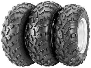 Carlisle 489 Titan Rear Tire - 25x11-12/--