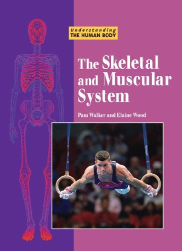 The Skeletal and Muscular System (Understanding the human body)