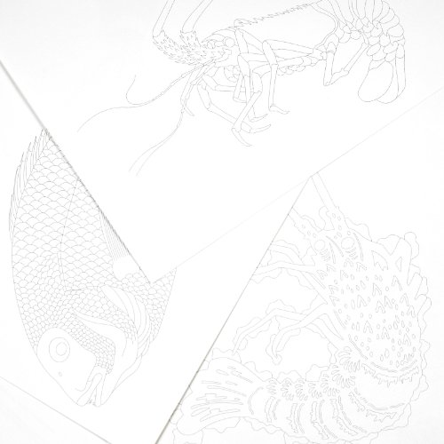 Artists Coloring Book Pepin : Pepin press japanese designs : artistscolouring book