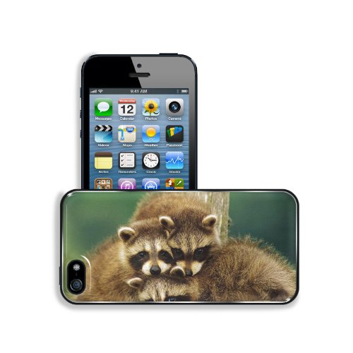Raccoon Three Sit Beautiful Baby Apple Iphone 5 / 5S Snap Cover Premium Aluminium Design Back Plate Case Customized Made To Order Support Ready 5 Inch (126Mm) X 2 3/8 Inch (61Mm) X 3/8 Inch (10Mm) Liil Iphone_5 5S Professional Metal Case Touch Accessories front-949838