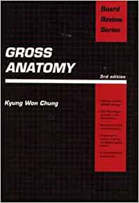 Board Review: Gross Anatomy by Kyung W. Chung (2004, Paperback, Revised)