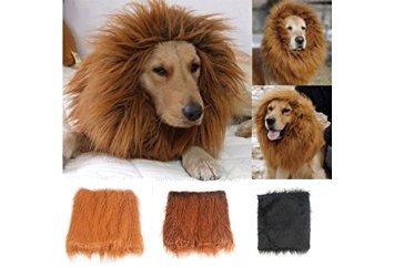 New P (Cat Lion Halloween Costumes)