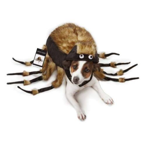 [Dog Halloween Costume Fuzzy Spider Tarantula Pet Costumes spiders XS - L (L)] (Batman And Robin Tutu Costumes)